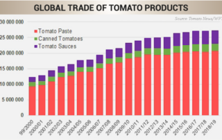 GLOBAL TRADE OF TOMATO PRODUCTS