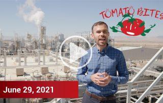 Tomato Bites Video - June 29, 2021