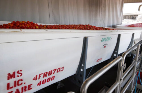 Organic Tomato Truck